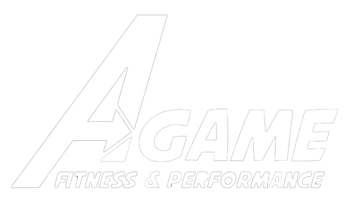 A Game Fitness and Performance
